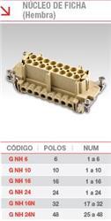 NUCLEO HEMBRA  6 POLOS G-NH-06